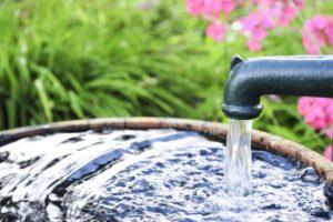 Секреты чистой и полезной воды на участке